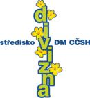 Divizna logo